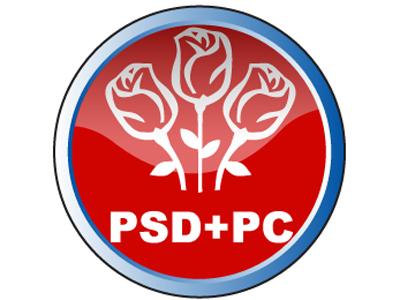 sigle partide_2008